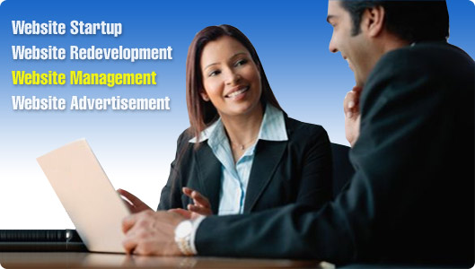 Website Management Consultation